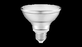 Par 30 lampen